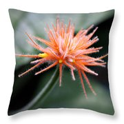 Fuzzy Orange Throw Pillow