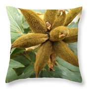 Fuzzy Pinwheel Throw Pillow