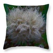 Quamquam Flos Throw Pillow