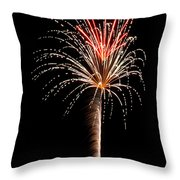 Fwsc 2014-21 Throw Pillow