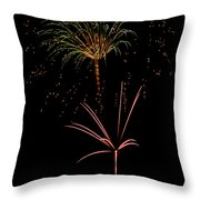 Fwsc 2014-34 Throw Pillow