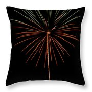 Fwsc 2014-42 Throw Pillow