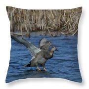 Gadwall Landing Throw Pillow