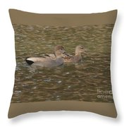 Gadwall Pair Throw Pillow