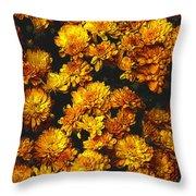 Gaia's Gold Throw Pillow