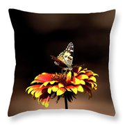 Gaillardia And Butterfly Throw Pillow