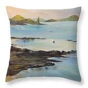 Galapagos2 Throw Pillow
