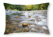 Gale River - Franconia New Hampshire  Throw Pillow