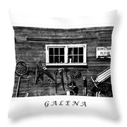 Galena Antiques Throw Pillow