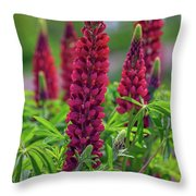 Gallery Red Lupines Throw Pillow