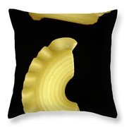 Galletti Throw Pillow