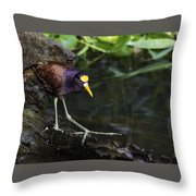 Gallinule Throw Pillow