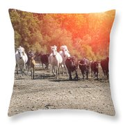 Galloping In Camargue Throw Pillow