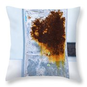 Cat In The Rust Throw Pillow