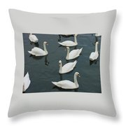 Galway Swans On The Claddagh Throw Pillow