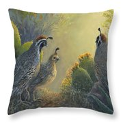 Gambel's Quail - Early Light Throw Pillow
