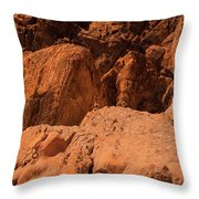 Gambels Quail Valley Of Fire Throw Pillow