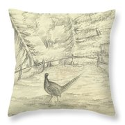 Game Bird By W  Buelow Gould  C 1835  Throw Pillow