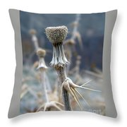 Game Of Thorns 4 Throw Pillow