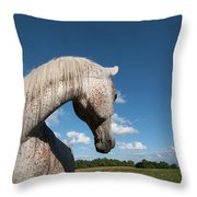 Gandawa II Throw Pillow