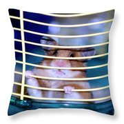 Gangster Hamster Throw Pillow