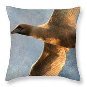 Gannet In Flight 2 Throw Pillow