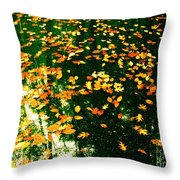 In The Gap Throw Pillow