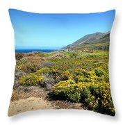 Garapata Beauty Throw Pillow