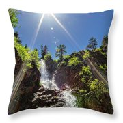 Garden Creek Falls Throw Pillow