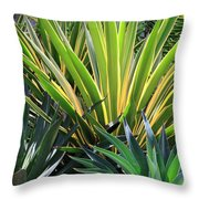 Garden Designs Throw Pillow