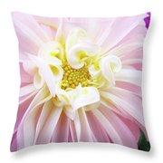 Garden Floral Art Pink Dahlia Flower Baslee Troutman Throw Pillow