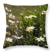 Garden Happiness Throw Pillow