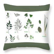 Garden Herbs Throw Pillow