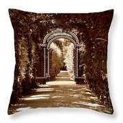 Garden Hollow  Throw Pillow