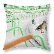 Garden In Paris Throw Pillow