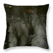 Garden In Winter. Throw Pillow