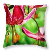 Garden Jewels 1 Throw Pillow
