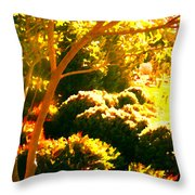 Garden Landscape On A Sunny Day Throw Pillow