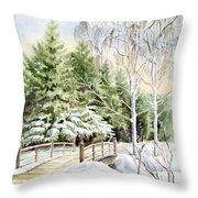 Garden Landscape Winter Throw Pillow
