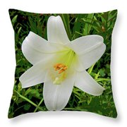 Garden Lily Posterized Background Throw Pillow