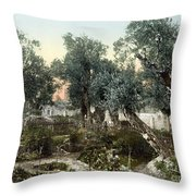 Garden Of Gethsemane Throw Pillow