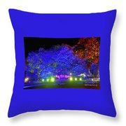 Garden Of Light By Kaye Menner Throw Pillow