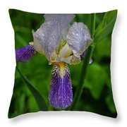 Garden Of Light Throw Pillow