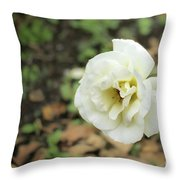 Garden Party Hybrid Tea Rose, White Rose Originally Produced By Throw Pillow
