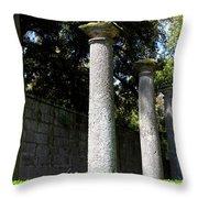 Garden Pillars Throw Pillow