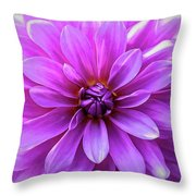 Garden Pink Throw Pillow