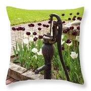 Garden Pump From The Old Days Throw Pillow