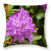 Garden Rhodoendron Plant Throw Pillow