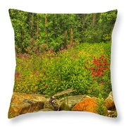 Garden Rocks Throw Pillow