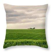 Garden Route In Green Throw Pillow